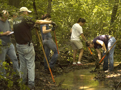 volunteers at Carpenter's Woods